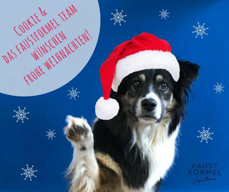 2018_Weihnachten_FB_Sasha_und_Blog