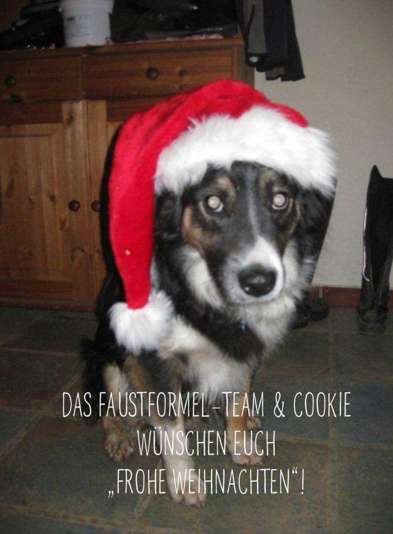 Blog-Beitrag_KW50_Froehliche_Weihnacht_Cookie_web