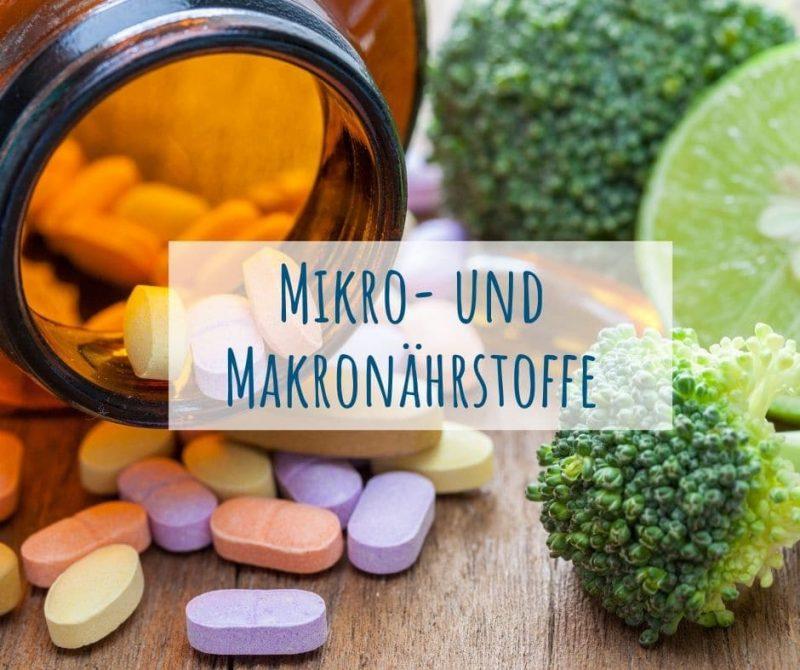 Makronaehrstoffe Mikronaehrstoffe